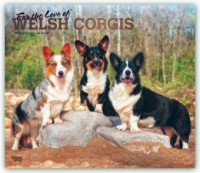 Welsh Corgis - For the love of 2020 - 18-Monatskalender mit freier DogDays-App