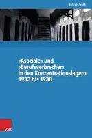»Asoziale« und »Berufsverbrecher« in den Konzentrationslagern 1933 bis 1938