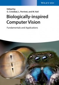 Biologically Inspired Computer Vision