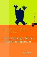Prozessubergreifendes Projektmanagement