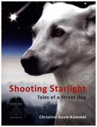 Shooting Starlight