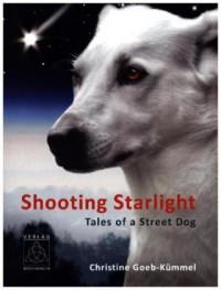 Shooting Starlight