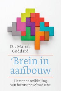 Brein in aanbouw