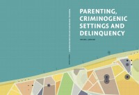 Parenting, Criminogenic Settings and Delinquency