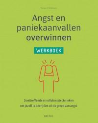 Angst en paniekaanvallen overwinnen - werkboek