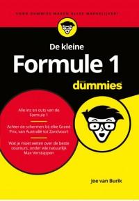 De kleine Formule 1 voor Dummies