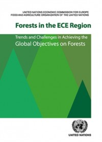 Forests in the Ece Region