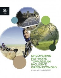 Uncovering Pathways Towards an Inclusive Green Economy