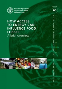 How Access to Energy Can Influence Food Losses