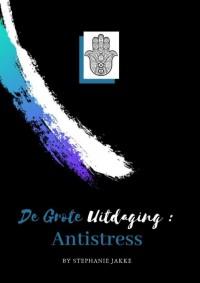 Kleurboek Voor Volwassenen De Grote Uitdaging : Antistress Voor Iedereen