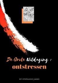 Volwassenen kleurboek De Grote Uitdaging : Antistress relief