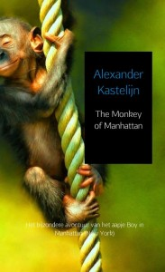 The monkey of Manhattan