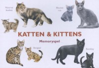 Katten & Kittens
