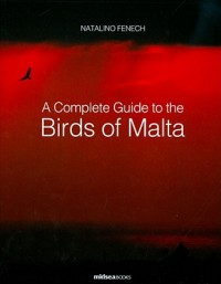 Complete Guide to Birds of Malta